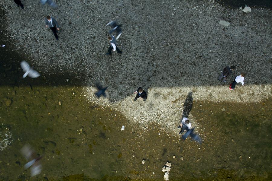 Chancepartout bevægelse - mennesker og fugle
